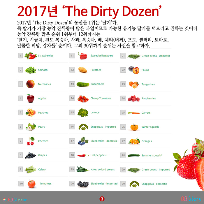 dirty dozen clean 15 2017 pdf